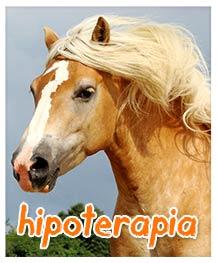 Hipoterapia